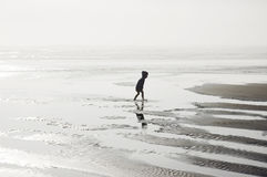 Wading alone. Little boy wading at the Pacific ocean shore, Long Beach, Washington Royalty Free Stock Images