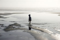 Wading alone. Little boy wading at the Pacific ocean shore, Long Beach, Washington Royalty Free Stock Photo