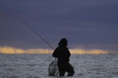 Wading fisherman Stock Images