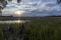 Wadmalaw海岛,南卡罗来纳,美国 库存图片
