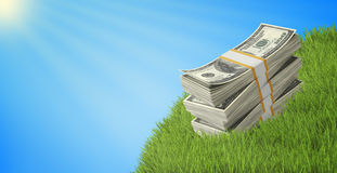 Wads of dollars lying on a grass under blue sky Stock Photo