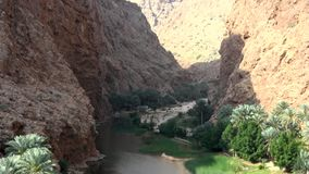 Wady in Oman stock footage