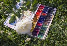 Waetercolorverven op natuurlijke groene klaverachtergrond Royalty-vrije Stock Foto