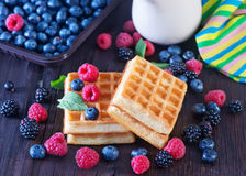 Wafels with berry Royalty Free Stock Photography