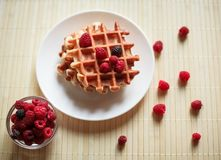 Wafels met honing, jam, en bessen op een witte plaat Royalty-vrije Stock Foto