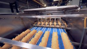 Wafer cones are being placed into each other in several rows by an industrial mechanism. 4K stock video footage