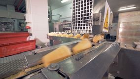 Wafer cups filled with ice-cream are being pushed along the conveyor in a factory facility stock footage