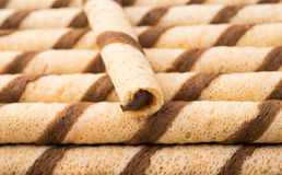wafer rolls with chocolate Stock Image