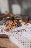 Wafer rolls on a lace napkin Royalty Free Stock Photography