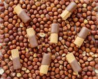Wafer Rolls on whole Hazelnuts Royalty Free Stock Photos