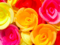 Wafer roses Stock Photography