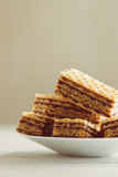Wafer. Sweet homemade wafer cakes on plate royalty free stock image