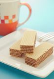 Wafers Royalty Free Stock Photo
