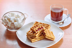 Wafers of coffee and sugar Stock Images