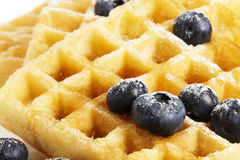 Waffels with sugar covered blueberries Royalty Free Stock Images