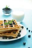 Waffle Imagem de Stock