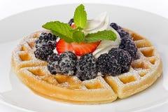 Waffle Royalty Free Stock Images