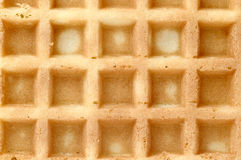 Waffle, background. Macro shot of a soft waffle, can be used as a background Royalty Free Stock Images