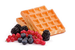 Waffle belga e bagas foto de stock royalty free