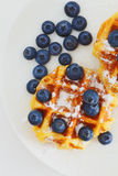 Waffle with berry Stock Photography