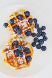 Waffle with berry a Royalty Free Stock Photos