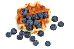 Waffle and blueberries Stock Image