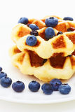 Waffle with blueberry a Stock Photography
