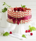 Waffle cake with raspberries Stock Images