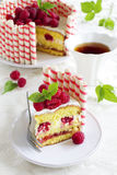 Waffle cake with raspberries Royalty Free Stock Photos