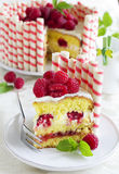 Waffle cake with raspberries Stock Photography