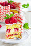Waffle cake with raspberries Royalty Free Stock Images