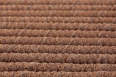 Waffle chocolate rolls. Stick closeup background Stock Images