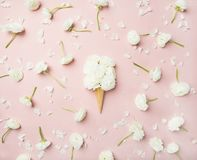 Waffle cone with white buttercup flowers over light pink background Royalty Free Stock Image
