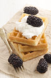 Waffle with cream and blueberries Royalty Free Stock Image