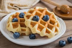 Waffle with fresh blueberry on plate and honey dipper Royalty Free Stock Photo