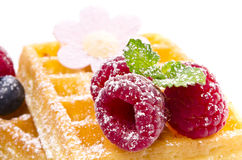 Waffle with fruit Royalty Free Stock Image