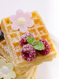 Waffle with fruit Stock Images
