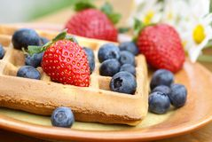 Waffle and fruit Stock Images