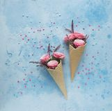 Waffle horns with flowers on blue background, Tenderness, St. Valentine`s Day, Top view stock images