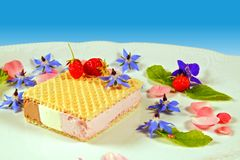 Coloured sandwich ice cream and strawberries, leaves of mint decorated on a white plate with fresh blue borage flowers and fruits. stock photo