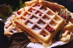 Waffle. Mother`s handmade, exquisite waffle royalty free stock photos