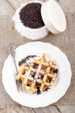 Waffle with powdered sugar on a plate Royalty Free Stock Photos