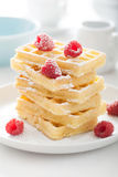 Waffle with raspberry and icing sugar Stock Image