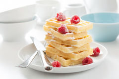 Waffle with raspberry and icing sugar Royalty Free Stock Photos