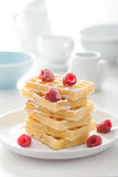 Waffle with raspberry and icing sugar Stock Photos