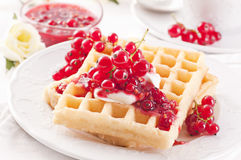 Waffle with redcurrant Stock Photography