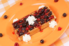 Waffle with soft fruits and whipped cream Stock Image