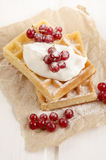 Waffle with sour cream and red currant Royalty Free Stock Photo
