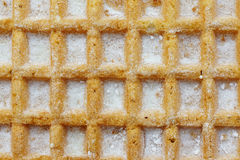 Waffle with sugar Royalty Free Stock Photo
