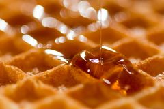 Waffle with syrup or honey